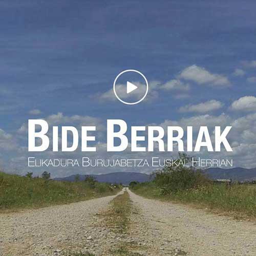 Diseño página web BideBerriak